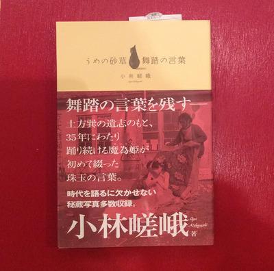 うめの砂草表紙.jpg