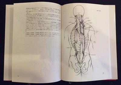 人体解剖と描写方_中ページ.jpg
